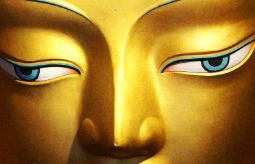Buddha Figurines~Dharamshala