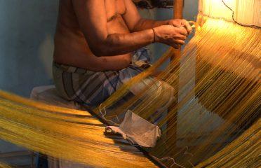 Saree Weaving ~ Thirubuvanam